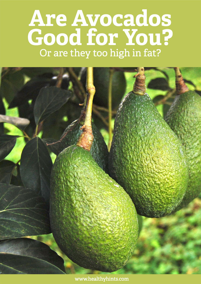 Are avocados actually good for you or are they too high in fat? Make sure to read this to learn everything you ever need to know about avocados.