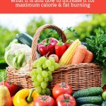 Learn everything you need to know about metabolism and your metabolic rate. From how to increase it to what it actually is and how it functions.