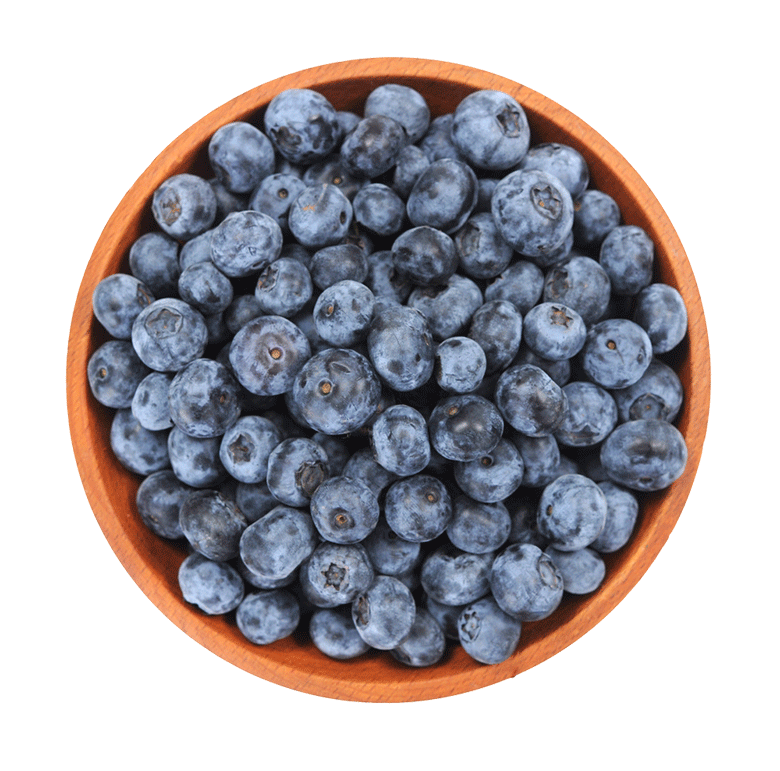 Here are some really good reasons to eat more blueberries. Learn everything you ever needed to know about blueberries, including- a nutritional breakdown, the health benefits and potential side effects.