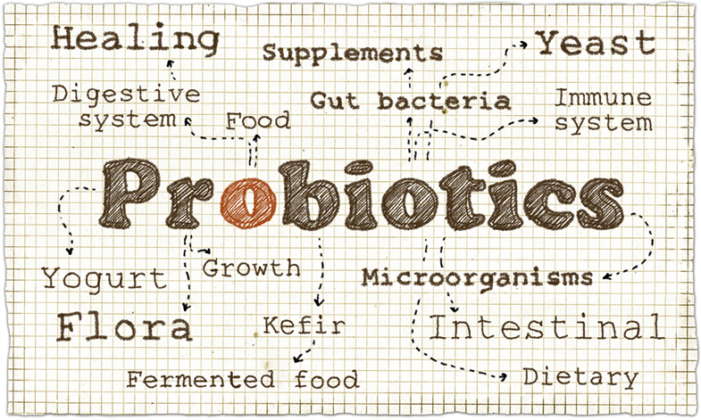 what are probiotics