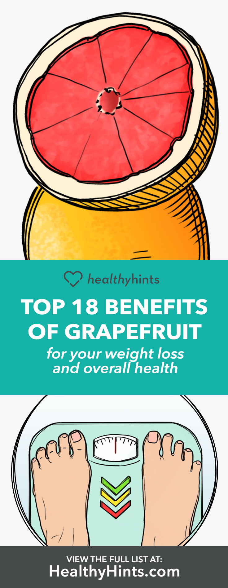 The benefits of grapefruit for weight loss and overall health.